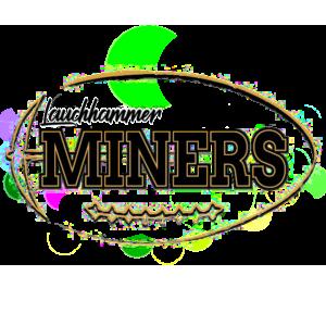 Die Lauchhammer Miners sind jetzt ein e.V. - Lauchhammer Miners